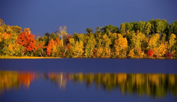 The early morning sun illuminated the reds, yellows and browns at a lake near Duluth.