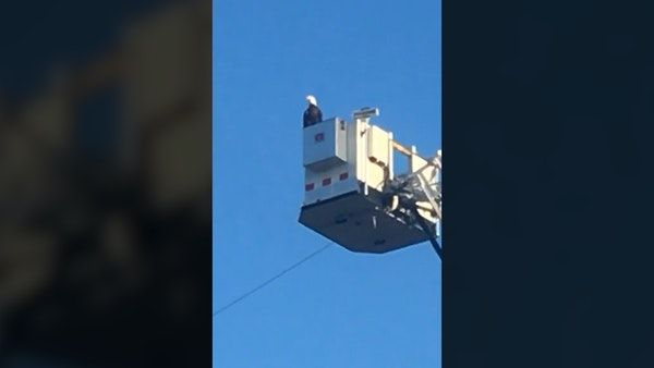 Bald eagle lands on aerial truck during 9/11 tribute