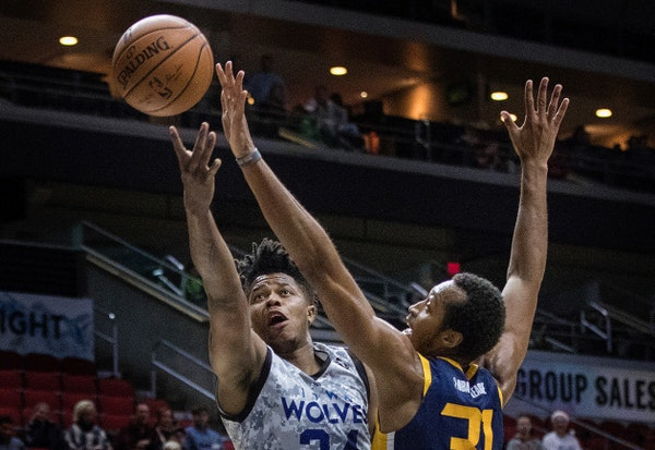 Timberwolves pan for open-tryout gold