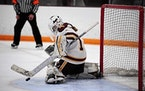 Forest Lake goalie Ally Goehner made a save in the Rangers' 1-0 victory over Andover on Thursday.
