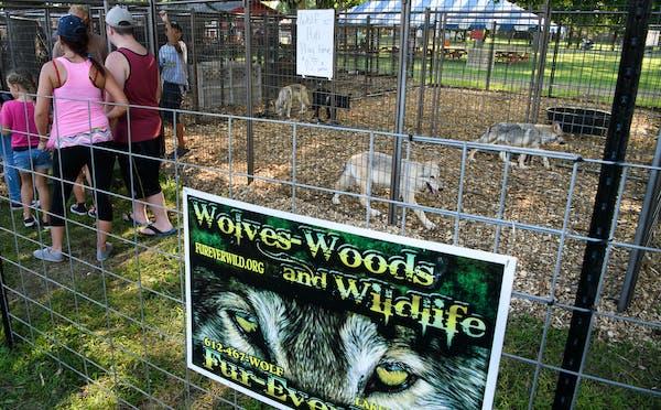 Fur-ever Wild, seen running a display at the Dakota County Fair in 2017.