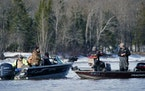 As the ice melts off the northern edge of Minnesota and the walleye begin their run to bite everything they can to fatten up before spawning season, d