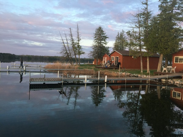 Even though the fishing opener at Paradise Resort on small Moose Lake near Bemidji was the main event, there was plenty of wildlife and birds to be ob