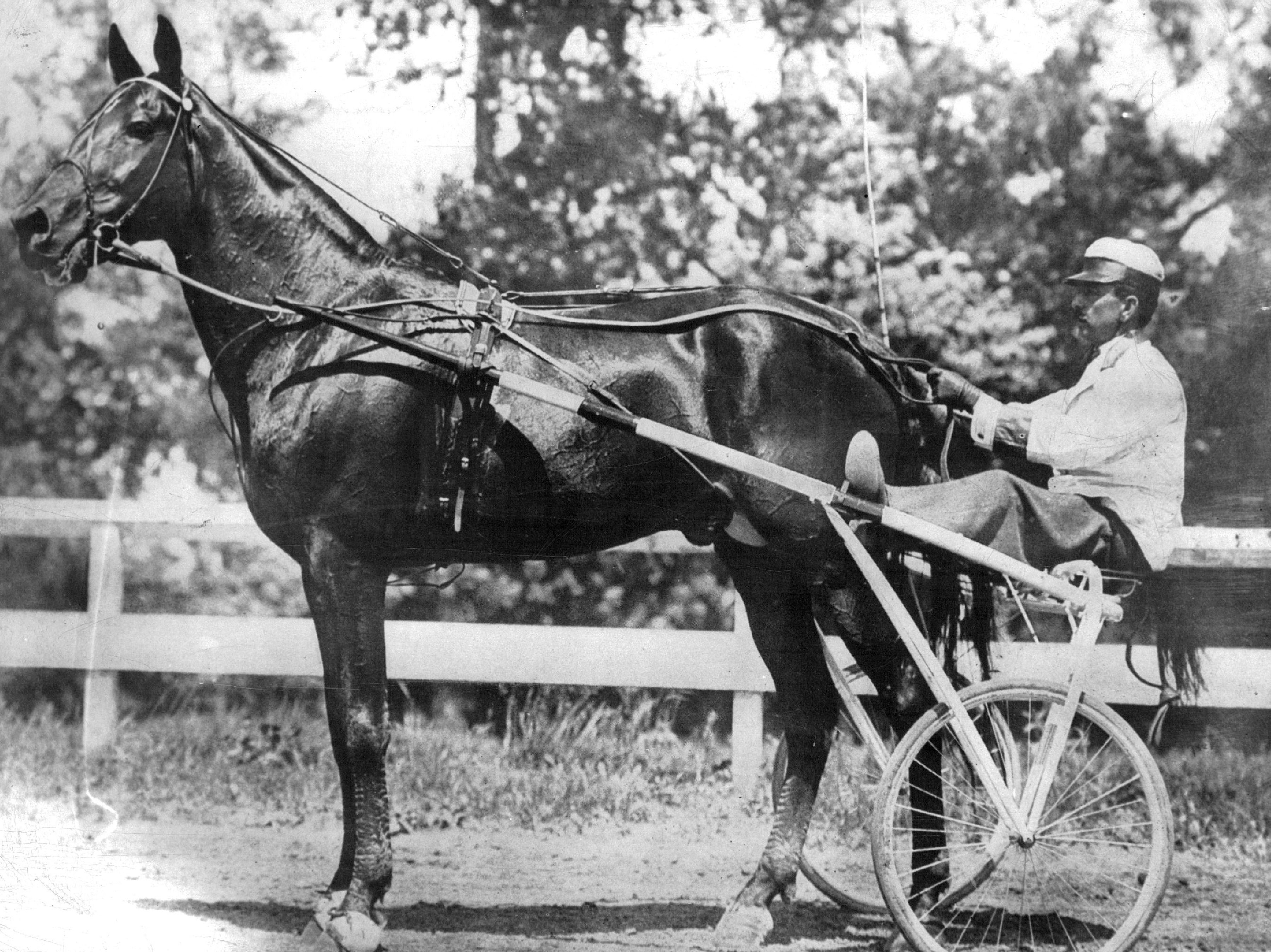 Dan Patch paced a record mile at the 1906 Minnesota State Fair, becoming a national celebrity and bringing fame to his owner Marion Savage.