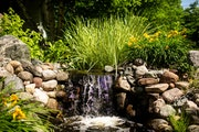 A bog flows into multiple pondless waterfalls in Candace McClenahan's Bloomington water garden