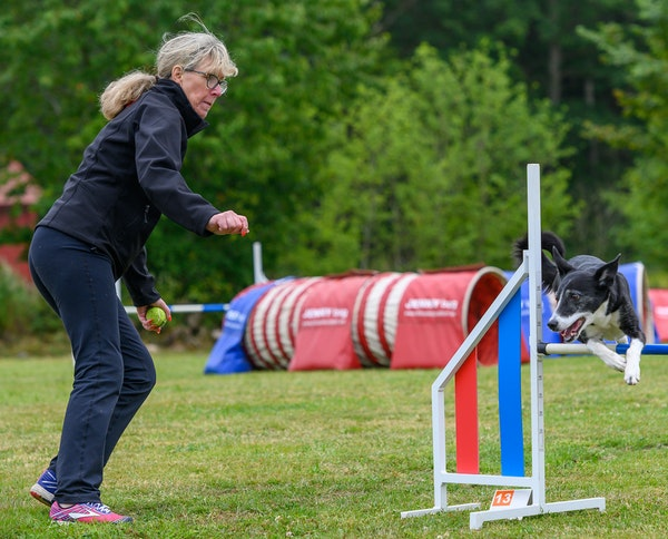Dawn Wessels of the Twin Cities area is among about 30 agility dog owners and trainers who are demonstrating their sport and their specially trained c