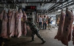 Workers unload pig carcasses at a warehouse that is part of China's national pork reserve, in Beijing, Sept. 27, 2019. T
