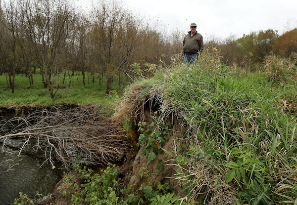Landowner Albert Carlson stands atop a blown out earthen dike where this spring the nearby flood-swollen Zumbro River busted an 80 foot-long hole in t