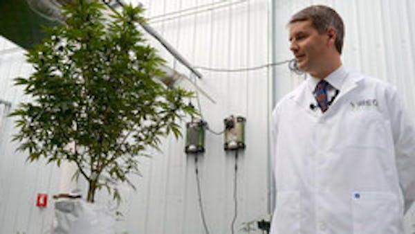 Dr. Kyle Kingsley of Vireo Health