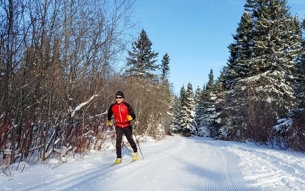The Sugarbush Ski Trail System cuts through the Superior National Forest in the Lutsen-Tofte area.