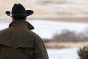Cowboy looking at his land.