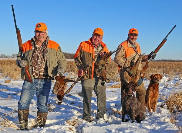 Nicollet Conservation Club members, from left, Froehlich, Otto and Zins and dogs Kirby and Blackie put four pheasants in their bag on Wednesday while