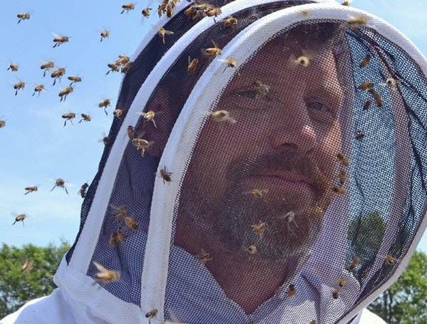 Bare Honey CEO Dustin Vanasse works with solar-energy developers on rural land to plant native plants and maintain hives.