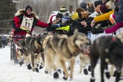Laura Neese high-fived spectators near the starting line as she took off on the John Beargrease sled dog marathon from Billy's Bar in Duluth on Sunday
