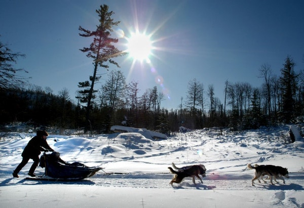 Kevin Walsh mushes dogs along the Gunflint Trail under blue skies and windchill of -50 degrees.