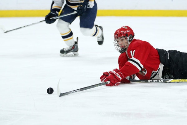 Standouts moving to state, standing out at hockey tourney hardly a new thing