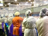 Tyson Foods workers wear protective masks and stand between plastic dividers at a poultry processing plant in Camilla, Ga. Tyson has added the plastic