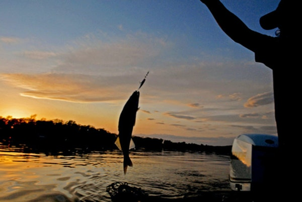 Fishing has been bonkers: On Mille Lacs, lots of anglers and walleyes