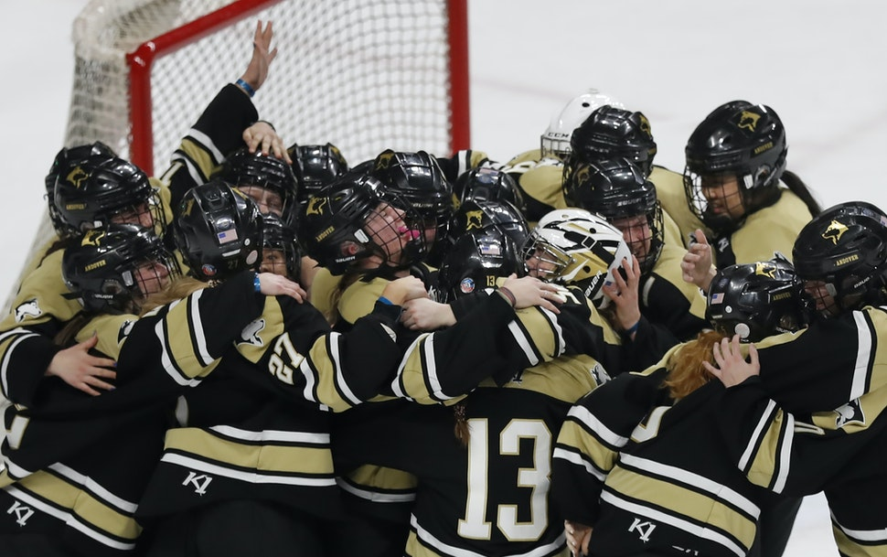 Andover players celebrated their 5-3 victory over Edina in the Class 2A girls' hockey championship at the X in February.