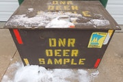 Deer head drop boxes like this one in southeastern Minnesota have become a fixture during recent deer hunts