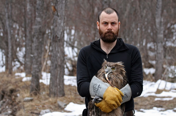 Jonathan C. Slaght and one of the female fish owls he caught and tracked in Russia. (The owl holds a fish in its beak.)