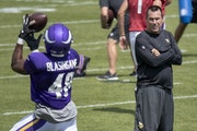 Souhan: Vikings' nepotism, cronyism just might work