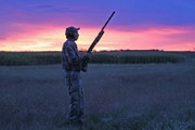 Anderson: The dawn of mourning dove season arrives