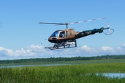 A DNR helicopter has been used this summer to spray herbicide to kill hybrid cattails in shallow lakes and marshes favored by ducks. The invasive plan