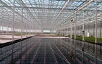 Revol Greens has raised $68 million in new capital, bringing its total investment to more than $200 million for giant greenhouses in Minnesota, Califo