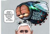 Sack cartoon: The fly