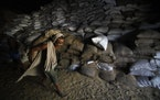 A laborer carries a sack of wheat in a state food corporation warehouse, in Jammu, India in 2011.