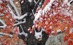 The first measurable snow of the season hit Minnesota last Tuesday.