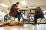 Casey Scrignoli filled out her ballot while her dog, Chester, played on the floor at First United Methodist Church in Duluth on Tuesday morning.