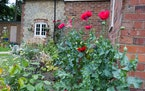 The back garden of the housesitting property, Nettlepole. In that area of England most of the properties have a name, rather than a house number. Phot