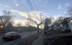 Trees along E. 42nd Street in south Minneapolis have been trimmed severely so that they don't interfere with power lines.