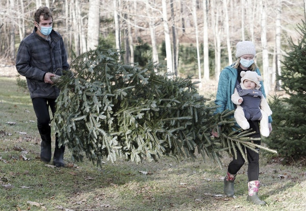 Michael, Megan, and daughter Isla Codini carry out Isla's first Christmas Tree at Seekonk Tree Farm, in Great Barrington, Mass.
