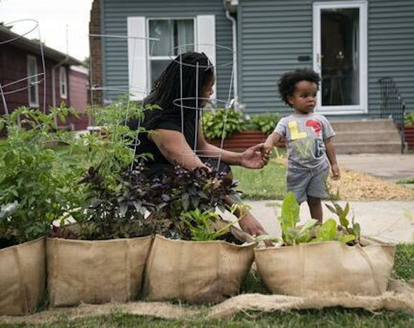 "Devin Brown grew vegetables in her yard to help feed residents of her North Minneapolis neighborhood. ""North Minneapolis is already a food desert,�"