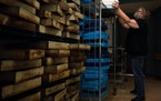 World's resource: Margaret Elkins, a stockkeeper, stacked trays after packing fruit flies at the Bloomington Drosophila Stock Center. In 2019, the c