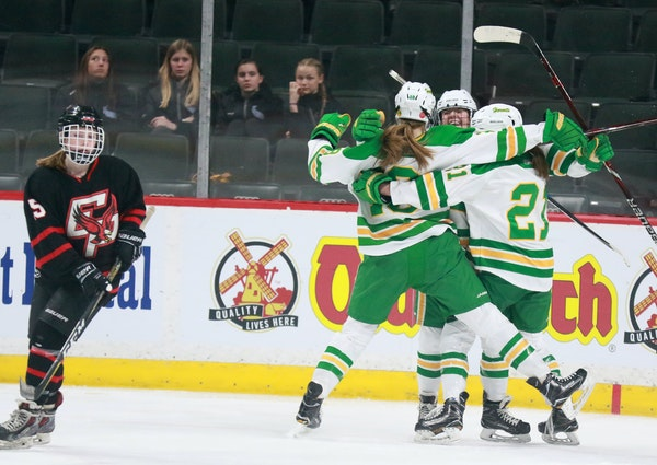 A group of fans watched Edina players celebrate a goal by Olivia Swaim, center, at the Class 2A girls' hockey state tournament in 2018. Limited numb