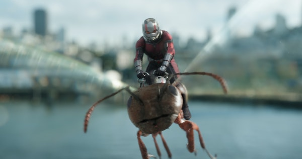 "Paul Rudd in ""Ant-Man and the Wasp."""