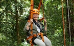 """""""Judi Dench's Wild Borneo Adventure"""" is one of the offerings on the new Discovery Plus."""