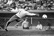 Goalkeeper Geoff Barnett during a game for the Kicks in 1978.