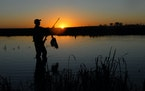 The Minnesota Department of Natural Resources is asking duck hunters to weigh in on a series of proposed regulation changes. The goal is to make hunti