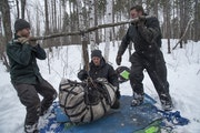 Weighing a mother bear in March 2019 were, from left, University of Minnesota graduate student Spencer Rettler, Department of Natural Resources volunt