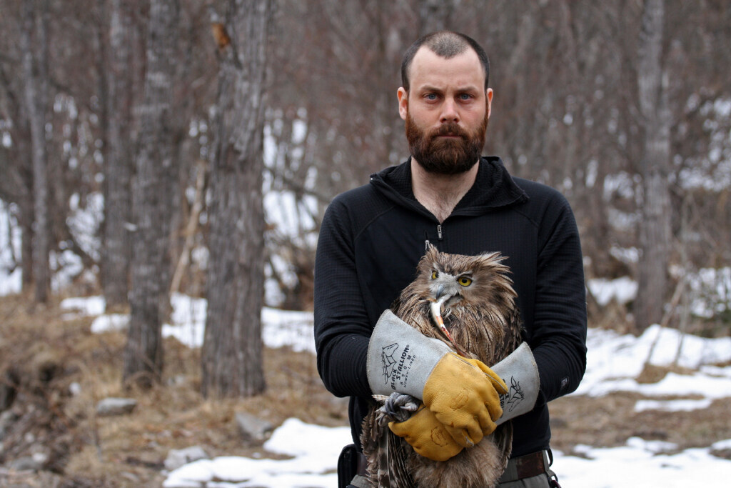 Jonathan C. Slaght holds a fish owl with a fish in its beak.
