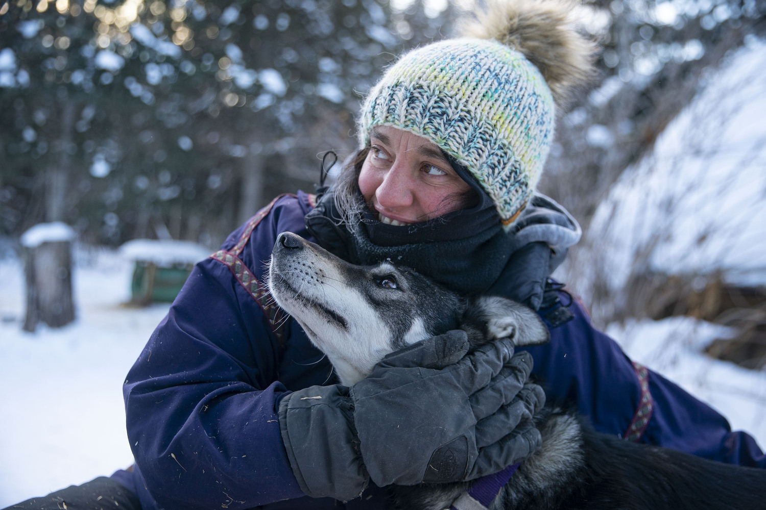 Altemus cuddled with Nancy, coming off a long training run. Nancy is one of her lead dogs.