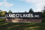 Land O'Lakes saw a 29% jump in 2020 profit, as gains in its dairy and animal nutrition businesses offset a squeeze in its crop inputs and services u