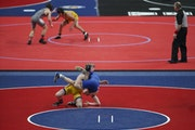 The wrestling state tournament, typically held at Xcel Energy Center, will take place at St. Michael-Albertville on March 25-27.