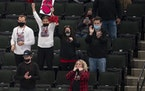 A small group of fans were at the Xcel Energy Center to cheer on the Stillwater girls' hockey team in the Class 2A tournament last week.