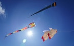 Because of how they play in the wind, kites are a good vehicle to talk about weather or even bird flight.